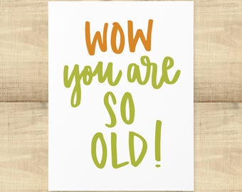 "Happy Birthday ""Wow you are SO OLD!"" greeting card, blank inside, envelope included"