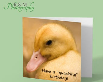 Duck Birthday card, quacking duckling birthday funny photo blank greeting card from original photograph by R&M Photography