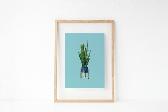 Potted snake plant wall decor illustration fandeluxe Gallery