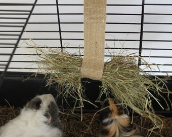 Hay  holder  for your  bunny ,guinea pig ,rat or small pet . These  two love it . cage  accessorie