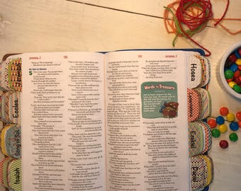 Boy's Bible Tabs FREE SHIPPING