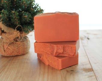 Warm Apple Pie Handmade Soap, Cold Process Soap, Gift Idea