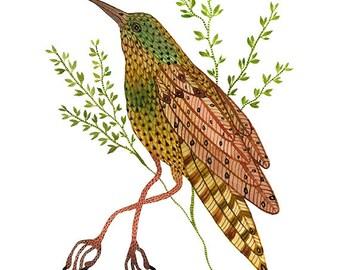 green bee eater bird art giclee print watercolor reproduction