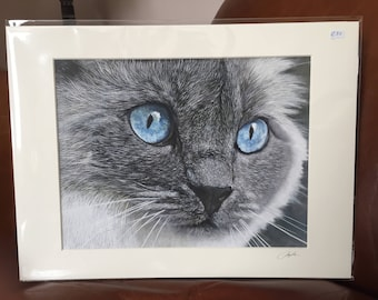CAT giclee signed print of my original oil painting