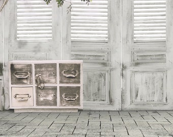 Indoors Photo Backdrop, Children' s photoshoots background, Louvered doors photography backdrops D-9803