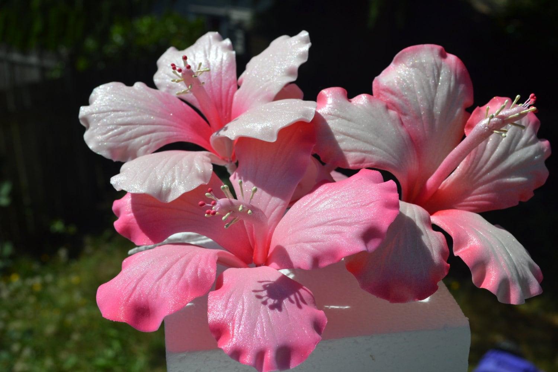 Tropical sugar gumpaste hibiscus flower for wedding cake from 23057 dkk izmirmasajfo