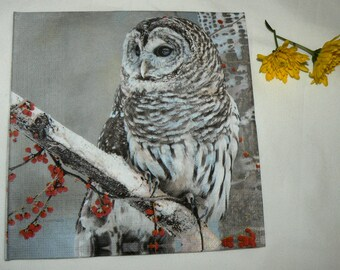 2  Snow owl image Napkins from Germany