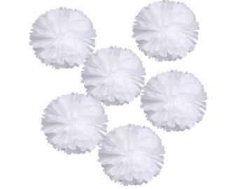 "White Tissue Pom Poms Wedding Birthday Party Room Decoration Tissue Paper Flower Poms 10"" Inches  White)"
