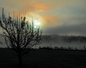Dawn On A Foggy Morning Sunrise,Lake Nockamixon,Bucks County,Bucks County Art,Haze,Misty,Shadows,Sunrise,Print,Photograph,Canvas Wall Art