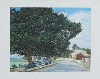The Fig Tree - Bahamian art print and note card of an  original oil painting by Eddie Minnis
