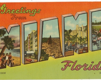Linen Postcard, Greetings from Miami, Florida, Flamingos, Palms, Large Letter, 1950