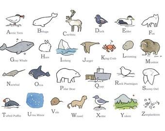 Illustrated Alphabet - Arctic North - Nursery Art Print