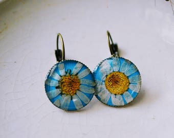 Daisy earrings / nature inspired jewelry / real flower jewelry / gift for a woman/ free shipping / birthday gift / Pressed flowers/ Blue