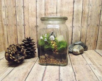 Greener Grass - Live Moss Terrarium - Miniature house - Glow in the Dark mushrooms - Fairy Garden - Terrarium - Handmade By Gypsy Raku