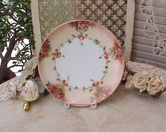 Gorgeous Antique Hand Painted Plate with Bittersweet Colored Roses by MZ Austria