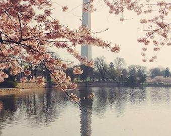 SALE, Fine Art Print, Cherry Blossom Art, Washington DC Art, Water Reflections, Spring, Flower Photo, Pink, Washington Monument Photo
