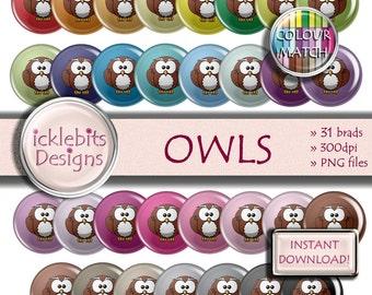 "Owl Digital Elements Pack ~ ""OWLS"" ~ 31 Flairs ~  Owls digital brads ~ CU Scrapbooking  ~ Rainbow ~ Design #117"