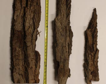 Cottonwood bark, 3 large pieces