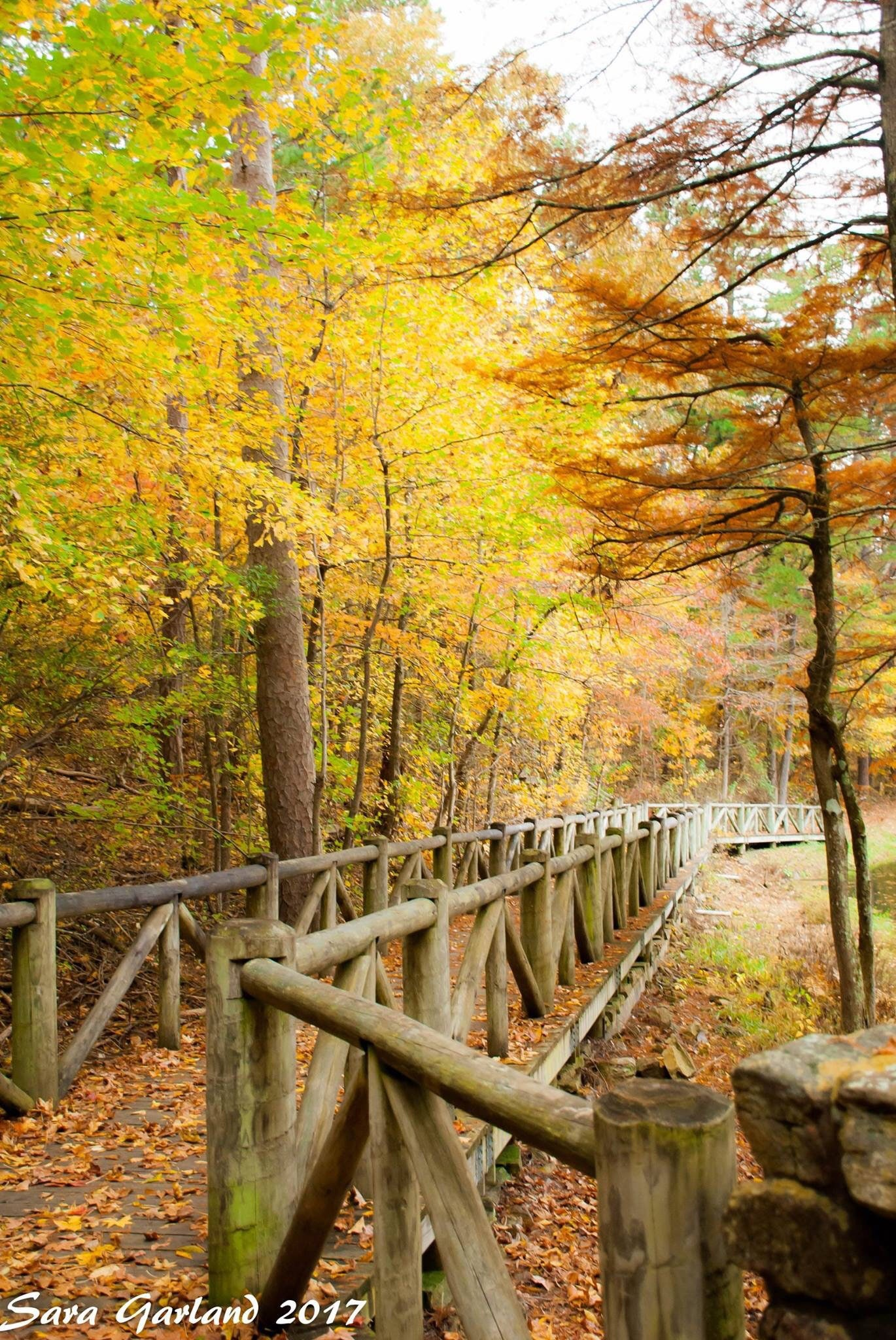 Landscape Photography Color Photography Fall Autumn