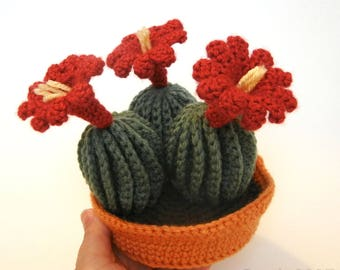 Claret Cup Cactus with Pot and Soil Crochet Pattern