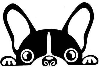 Boston Terrier Decal