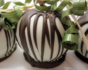 4-Pack White Chocolate Caramel Apples