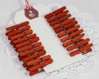 Orange Clothespins, Choice of 3 Sizes, Pantone Celosia Orange