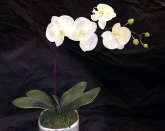 Artifical White Orchid