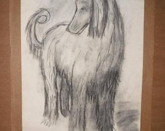 Charcoal drawing-dog-Afghan-monogram-41.5 cm x 29.7 cm-Charcoal pencil drawing-dog-afghane-monogram-41.5 cm x 29.7 cm