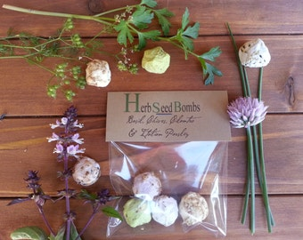 4 Herb Seed Bombs herb garden kit seed balls herb indoor herb garden herb planter herb marker herb kit seed kit seed paper plantable paper