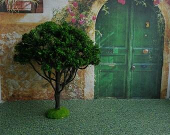 Tree for garden.Tree. Dollhouse Landscape. Miniature Dollhouse. 1:12 Scale.