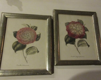 BORGHESE BOTANICAL WALL Hangings