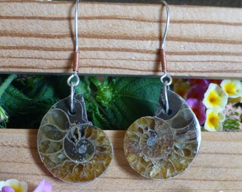 Ammonite Fossil Earrings Fossil Jewelry Sterling Silver and Copper Jewelry for her Beach Earrings Boho Sea Shell jewelry Gift    # E-156