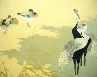 Print - Bird Print - Vintage Print - Duck Print - Vintage Japanese Print