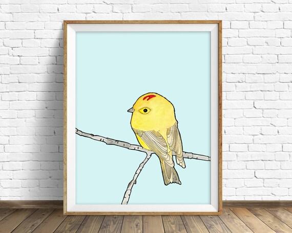 Ruby-crowned Kinglet -bird, drawing, watercolor, bird print, blue, art print, wall art print, large wall art, art print, woodland wall art