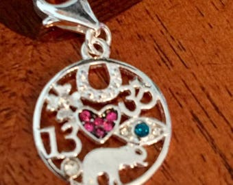 Lucky Charm, dangle or necklace.