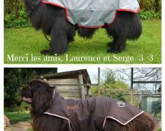 Waterproof coats for large dogs