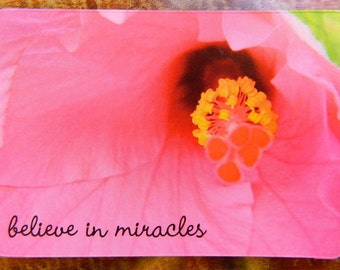 LAST ONE Fridge Magnet, Inspirational Magnet, Flower Photo Magnet, Pink Hibiscus Flower, Positivity Faith Locker Cubicle Believe in Miracles