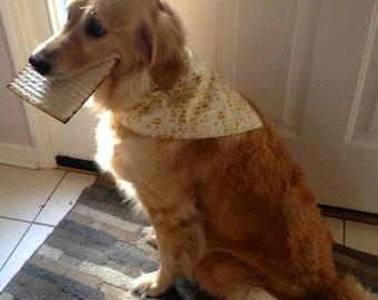 Passover Dog Bandana Matzah