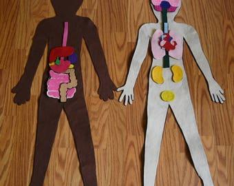 Human Body Template Kit