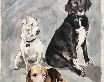 Custom Dog Illustration- Dog Portraits-Animal Portrait-Mother's Day Gift-Pet Portrait-Boston Terrier