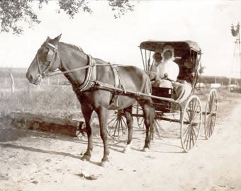 Victorian Horse Buggy