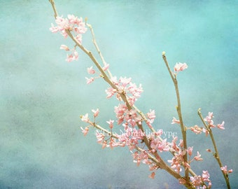 Cherry Blossom Photo Cherry Blossom Picture Flower photography Spring Flower Decor Flower Photo Art Cherry Blossom Print Botanical Wall Art