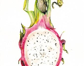Dragon Fruit Print