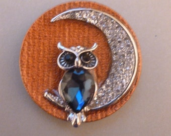 Owl on the Moon - Magnet