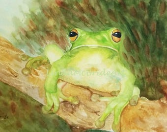 Green Frog 3.5x5 Blank Notecard with Envelope
