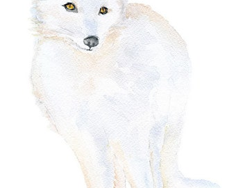 """Arctic Fox Watercolor Painting ACEO print - Giclee Print Reproduction 2.5""""x3.5"""""""