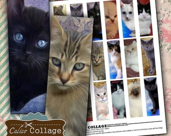 Printable Digital Collage Sheet, 1x3 Inch Images, Fancy Cats, 1x3 Collage Sheet, Digital Microslides, Collage Sheets, Printable Sheets