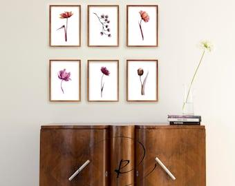 Set minimal flowers print, set amount, set option, minimal flower print, floral print wall art, prints set, modern flower print, choose set