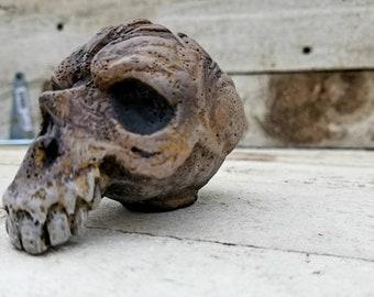 Skull sculptures.10 out of 19.monster skulls. halloween decor. resin figures. oddities.dark art. creepy sculptures. creature sculptures